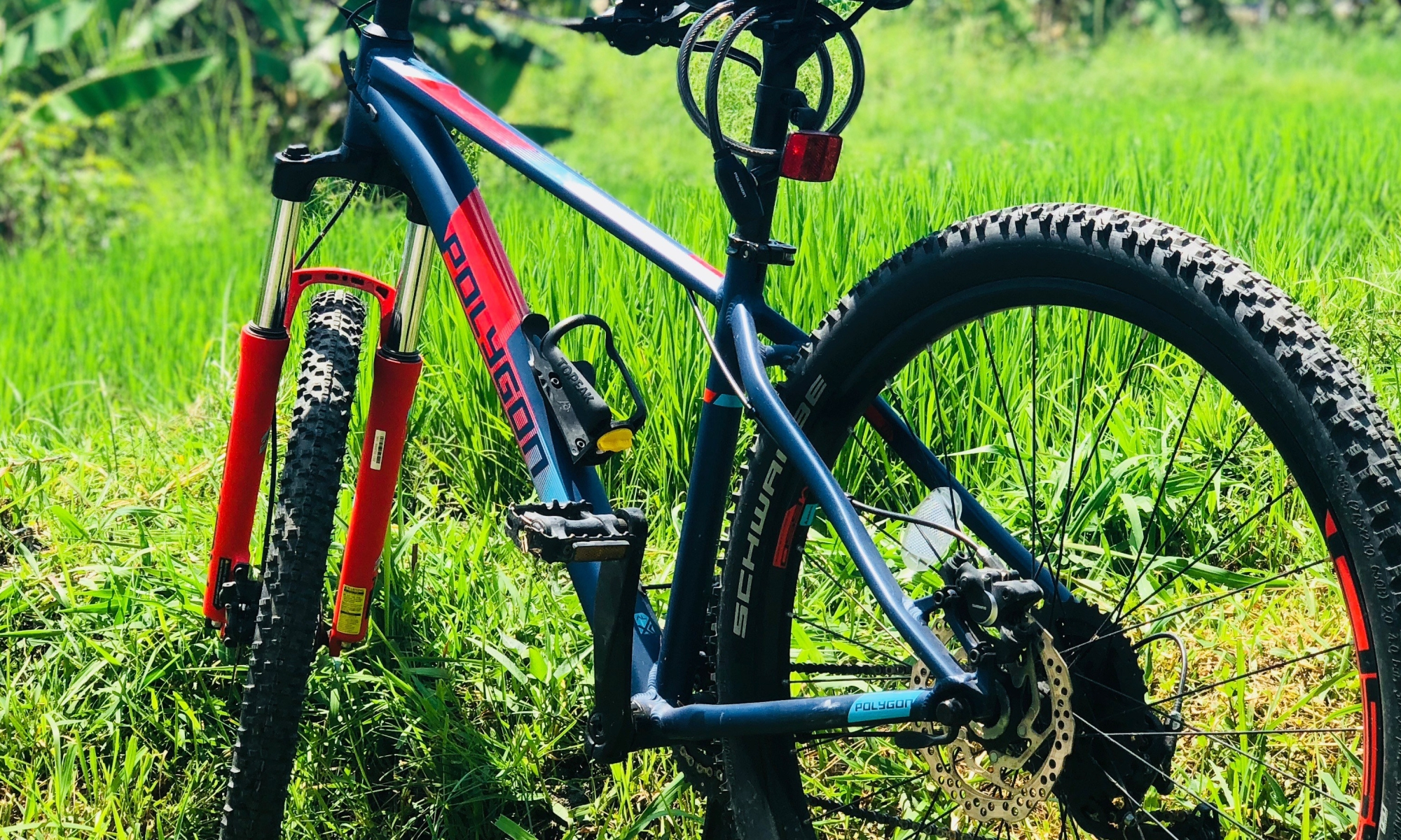 eBikes Electric Bicycle Tours Starting from Mount Batur
